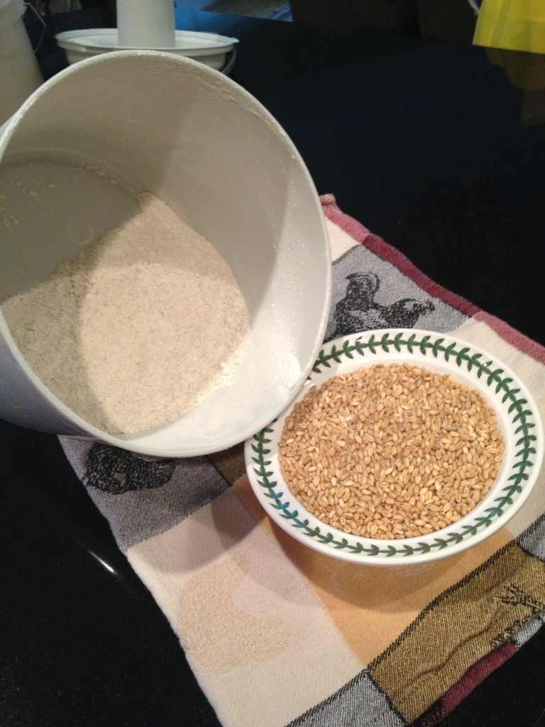 Whole Soft White Wheat before and after milling into flour.